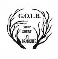 Grup Obert Les Branques
